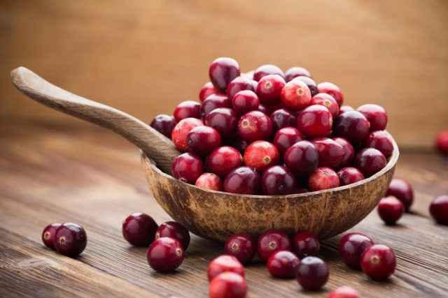 Streusselteigkuchen mit Cranberrys