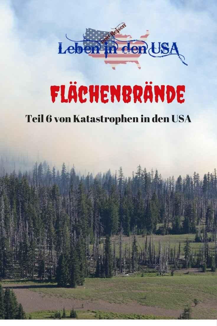 Waldbrand Flächenbrand in den USA