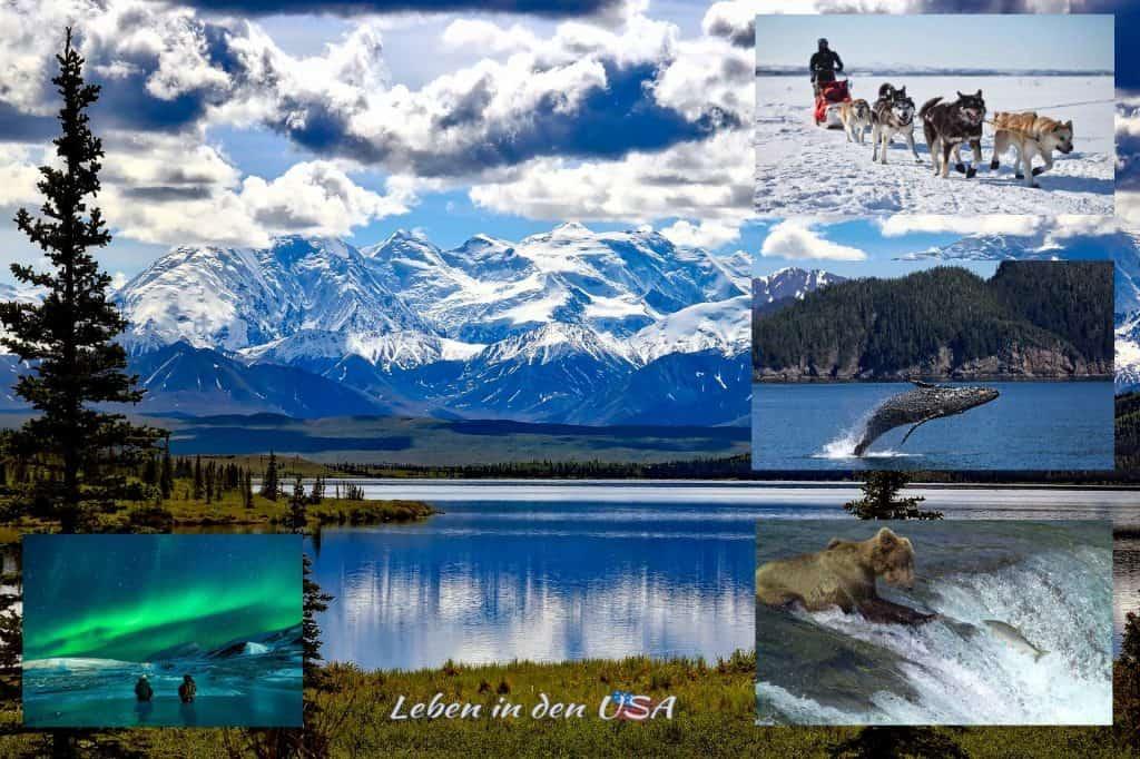 Alaska ist gering besiedelt und hat atemberaubende Natur zu bieten