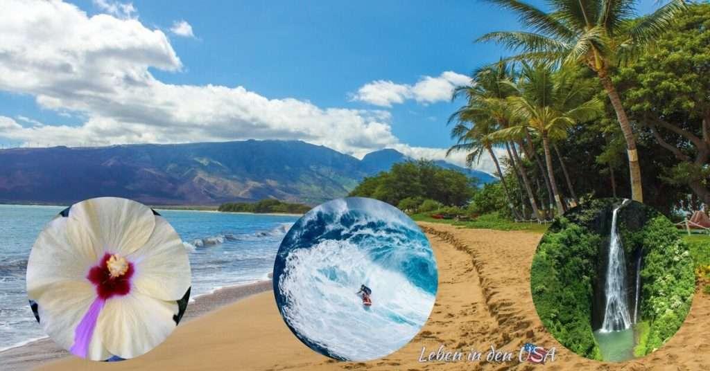 Hawaii einer der Staaten Amerikas