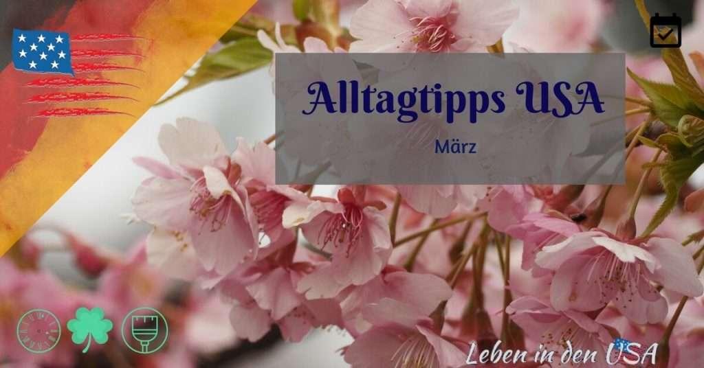 Tipps für den Alltag im März