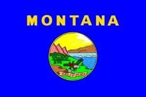Montana Flagge