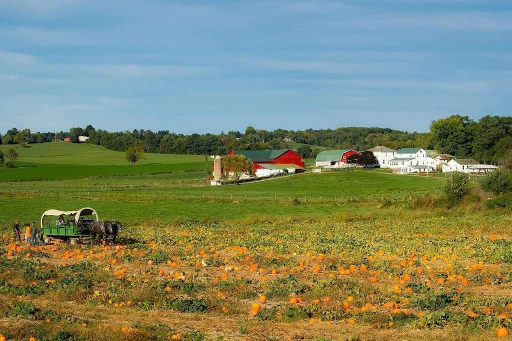 Ohio ist ein Staat in den USA mit vielen deutschstämmigen Amerikanern und Amish