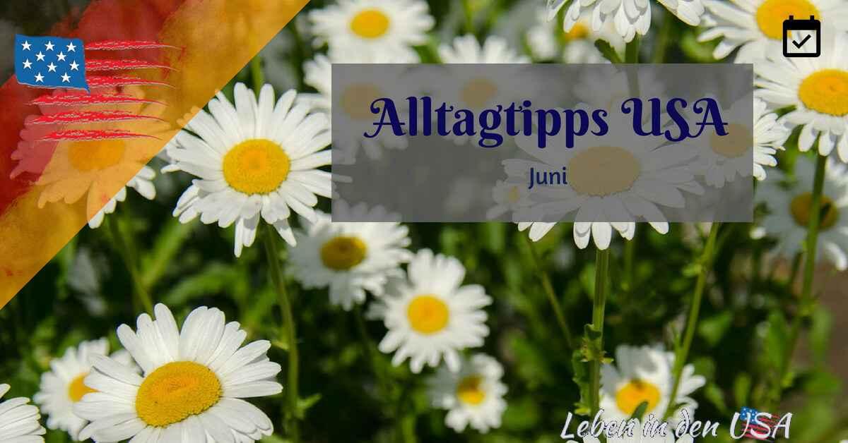 Tipps für den Alltag in den USA im Juni